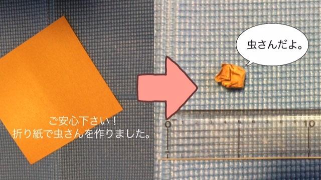 説明のために折り紙で虫を作りました